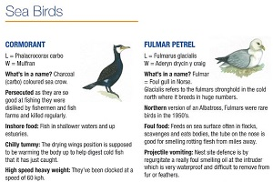 Wildlife Fact Sheets