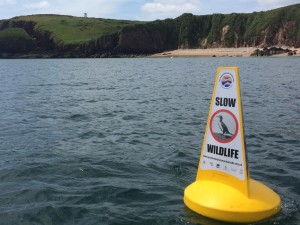 Marine Code Buoys at Caldey Island