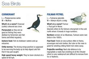 Wildlife Factsheet box